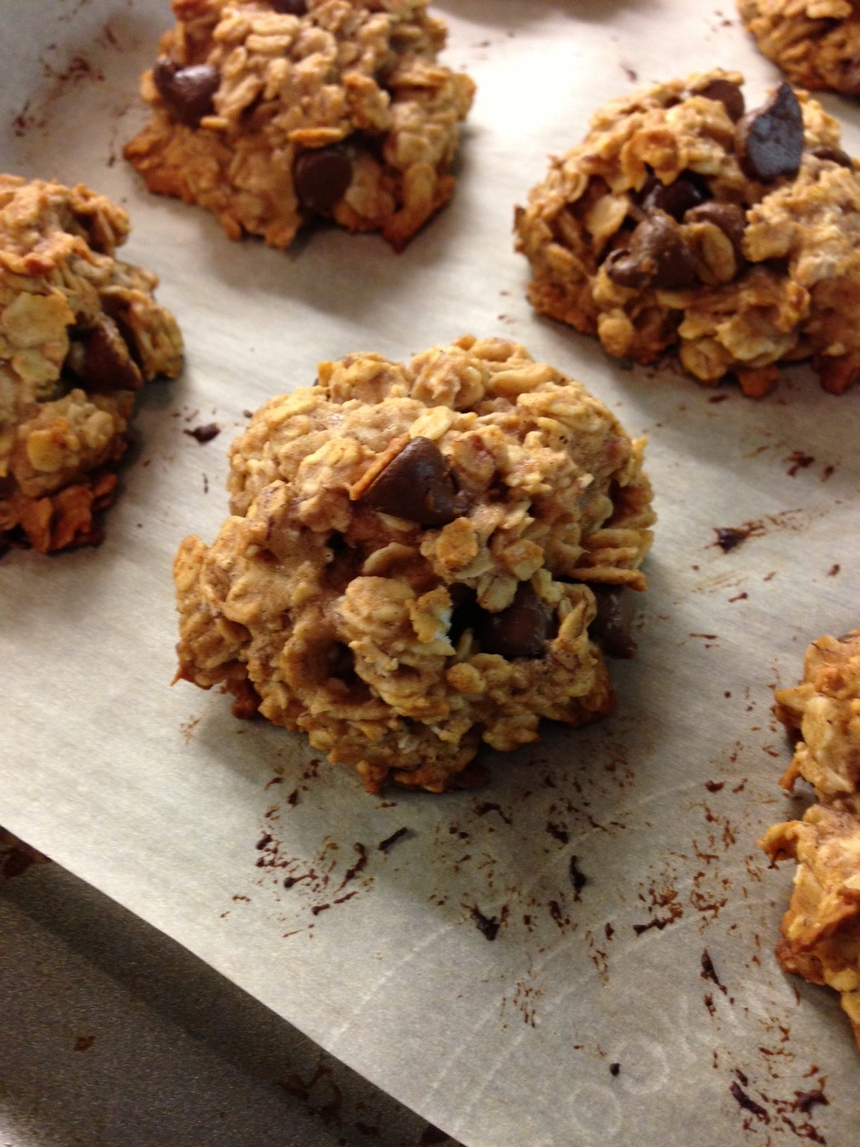 Healthy Oatmeal Chocolate Chip Cookies - Lauren Follett ...